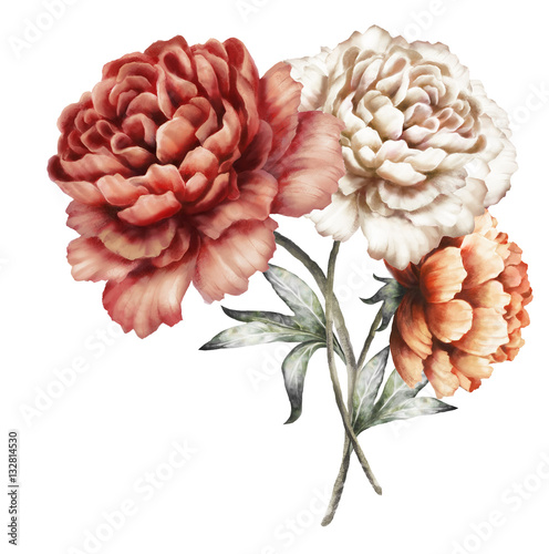 red peonies. watercolor flowers. floral illustration in Pastel colors. bouquet of flowers isolated on white background. Leaf. Romantic composition for wedding or greeting card. - 132814530