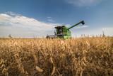 Harvesting of soybean field - 132814739