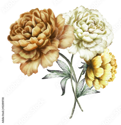 yellow peonies. watercolor flowers. floral illustration in Pastel colors. bouquet of flowers isolated on white background. Leaf. Romantic composition for wedding or greeting card. - 132814758