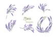 Floral lavender retro vintage background