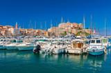 Marina of Calvi Corsica