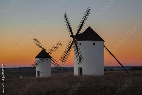 Paisaje con molinos de viento Poster