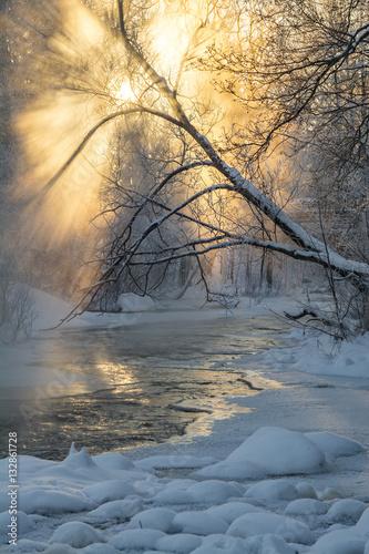 Poster Foggy river in sunrise in winter