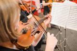 Fototapety Music School for Girls on the violin