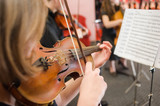 Music School for Girls on the violin - 132862742