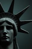 Statue of Liberty portrait - 132867949