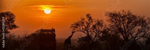 African Safari Sunset Silhouette