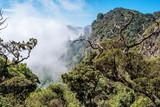 Sri Lanka: Horton Plains National Park, formation of clouds