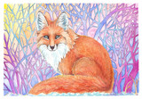 Fox Drawing watercolor and colored pencil - 132922134