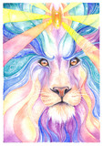 Lion Drawing watercolor and colored pencil - 132922503