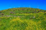 Legendary Golan Heights