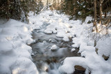 Long exposure of river in winter forest at Jalovecka valley, Slovakia