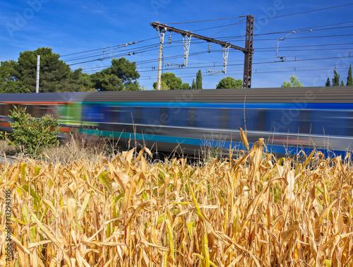 Poster train électrique rapide à travers champ de maïs