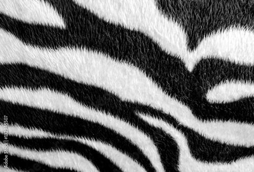 Fototapeta Zebra skin pattern leatherette fabric