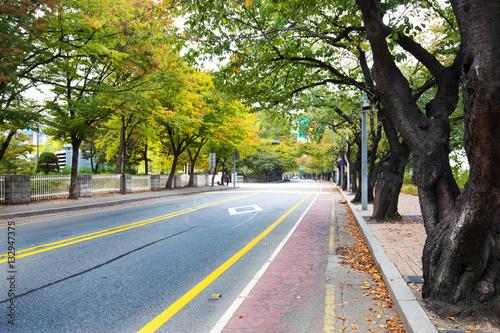 Fotobehang Seoel city road with green trees in seoul
