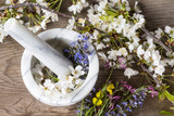 Alternative Medicine: preparation of essences of flowers and spring herbs
