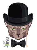 Cat Sphinx. Portrait of a green-eyed Sphinx Cat hipster in the monocle with gold rim and chain, and hat bowler
