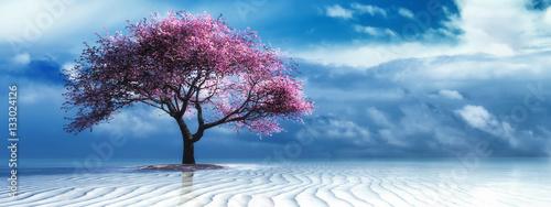 tree on the beach - 133024126