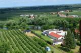 Sadownictwo na Mazowszu/The orchards in Mazovia, Poland - 133111562