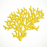 Yellow corals sea life small object isolated on white background