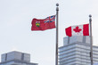 Canada and Ontario flags in front of skyscrapers in Toronto