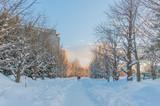 Sapporo in winter season