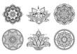 Mandala flowers. Draws to relax
