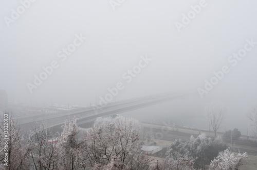 Poster Winter mist in Bratislava, Slovakia