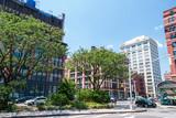 New York Tribeca streets