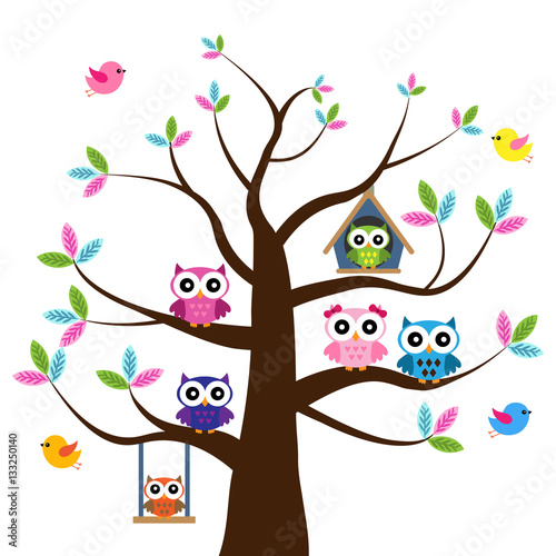 Vector set of a colorful owls at the tree