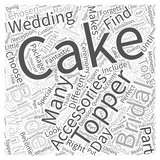 The Cake Topper In Your Bridal Accessories Package Word Cloud Concept