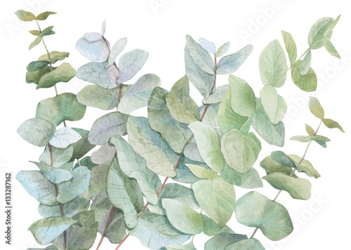 watercolor illustration leaves - 133287162