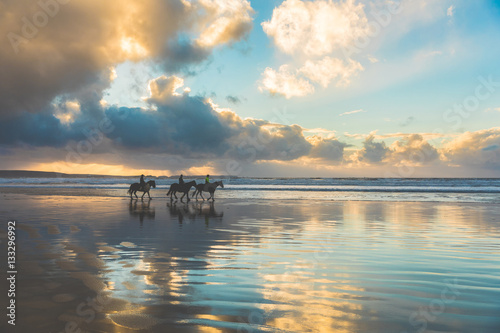 Poster Horses walking on the beach at sunset