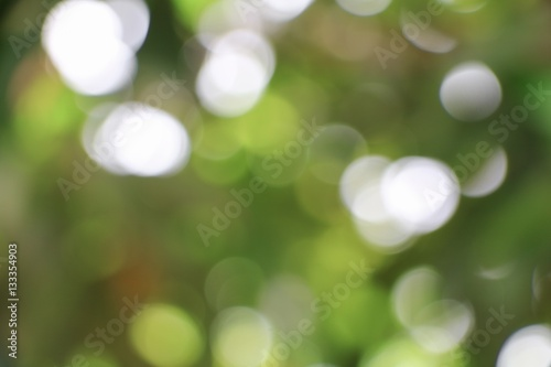 Bokeh natural color  warm background. Filter leaf of the tree Poster