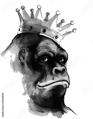 Gorilla king - 133361503