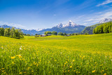 Fototapety Idyllic landscape in the Alps with blooming meadows in summer