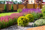 Fototapety Beautiful backyard landscape design. View of colorful trees and decorative trimmed bushes and rocks
