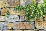 Fototapety Natursteinmauer im Garten | Gartengestaltung