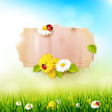 Spring sunny background