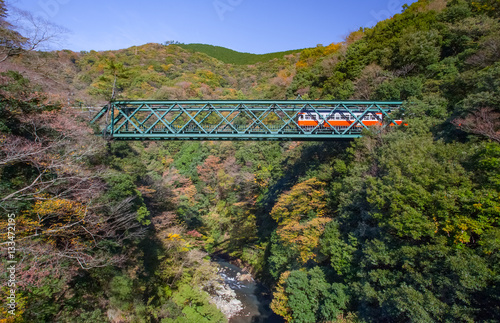Poster Beautiful mountain landscape with railway bridge and train in autumn season at H