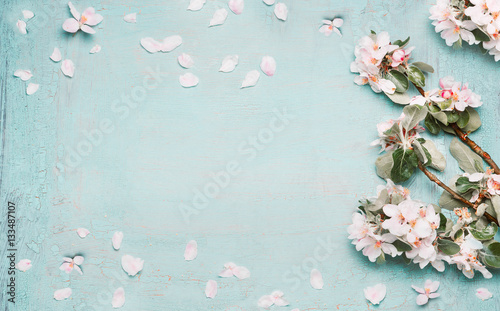 Foto Murales Spring nature background with lovely blossom in blue  pastel color, top view, banner. Springtime concept