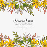 cute flowers frame background vector illustration design