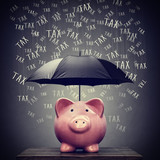 Umbrella protecting piggy bank savings from tax