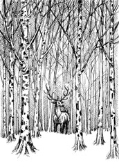 Wildlife carbon drawing. Deer in winter forest