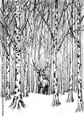 Fototapeta Wildlife carbon drawing. Deer in winter forest