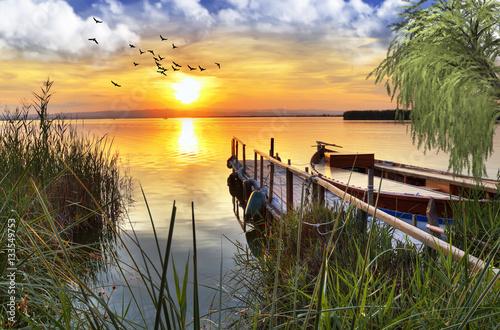 Fotobehang Een Hoekje om te Dromen embarbacero bajo el arbol del lago