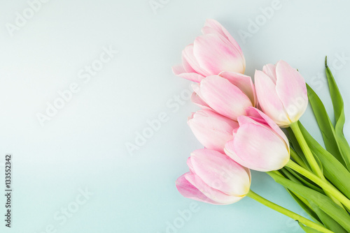Gorgeous tulips for holidays. Poster