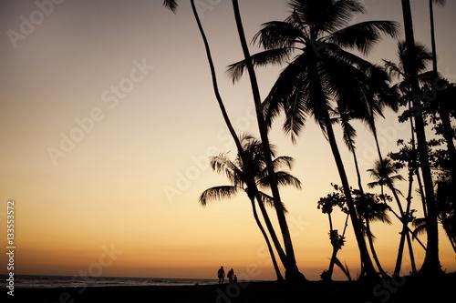 Poster coucher de soleil sur la plage avec des palmiers