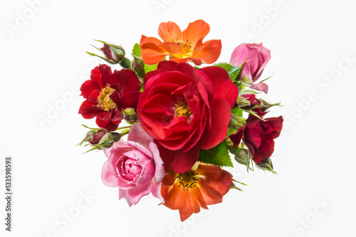 Papiers peints Azalea bouquet of colourful roses on white background