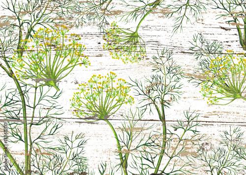 Fototapeta Watercolor pattern of fennel plant